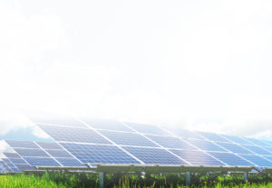 commercial solar plant modules on a green field